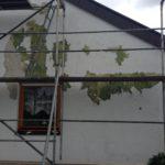 Blätternde Fassade