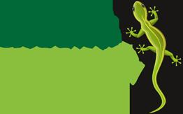 Stuckateur Drechsler Logo